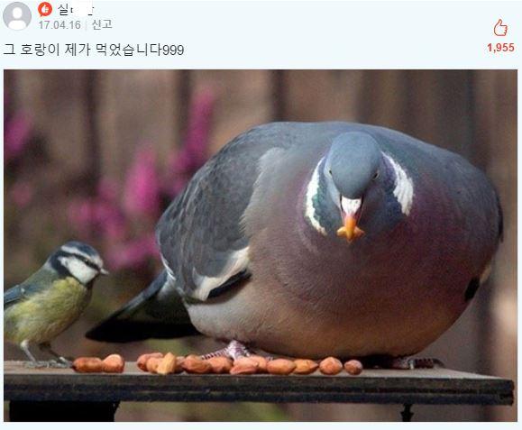 eat04.jpg